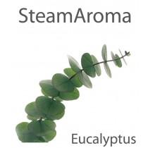Aroma Eucalyptus