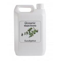 Steam Aroma Eucalyptus 5Litre