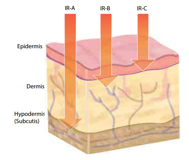 infrared skin penetration of IRA IRB IRC Oceanic infrared sauna