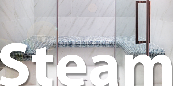 Oceanic Saunas Homepage Steam room Category
